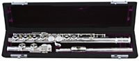 Trevor James Privilege Flute Outfit Silver plated headjoint and body tube. Pointed Key Arms