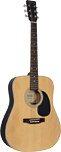 Ashbury AG-25 Solid Top Acoustic Guitar